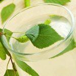 Квас из березового сока: простой рецепт полезного напитка