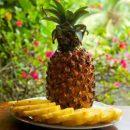 Названы целебные свойства ананаса