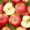 Врачи назвали самый полезный фрукт для здоровья сердца