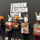 Мех животных запретили демонстрировать на неделе моды