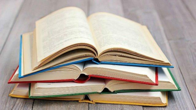 Что такое жанр в литературе