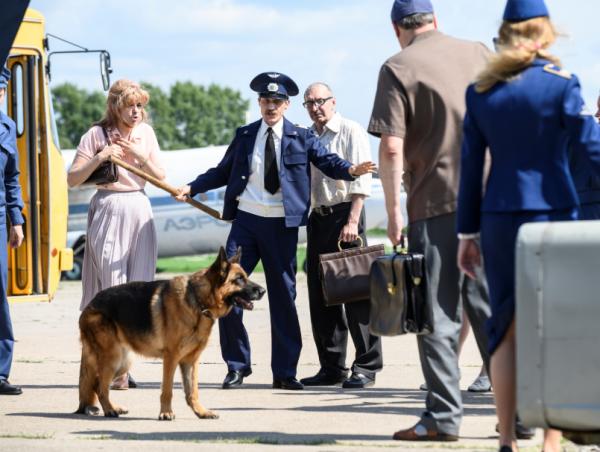 Фильм «Пальма»: Брошенная собака каждый день возвращается на взлетную полосу, где ее предали